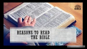 The Bible and its Uniqueness & Reasons to read it!