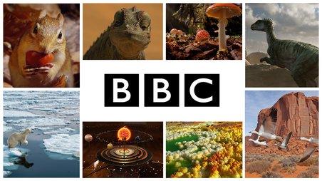 La chaîne BBC maintenant disponible sur Curio