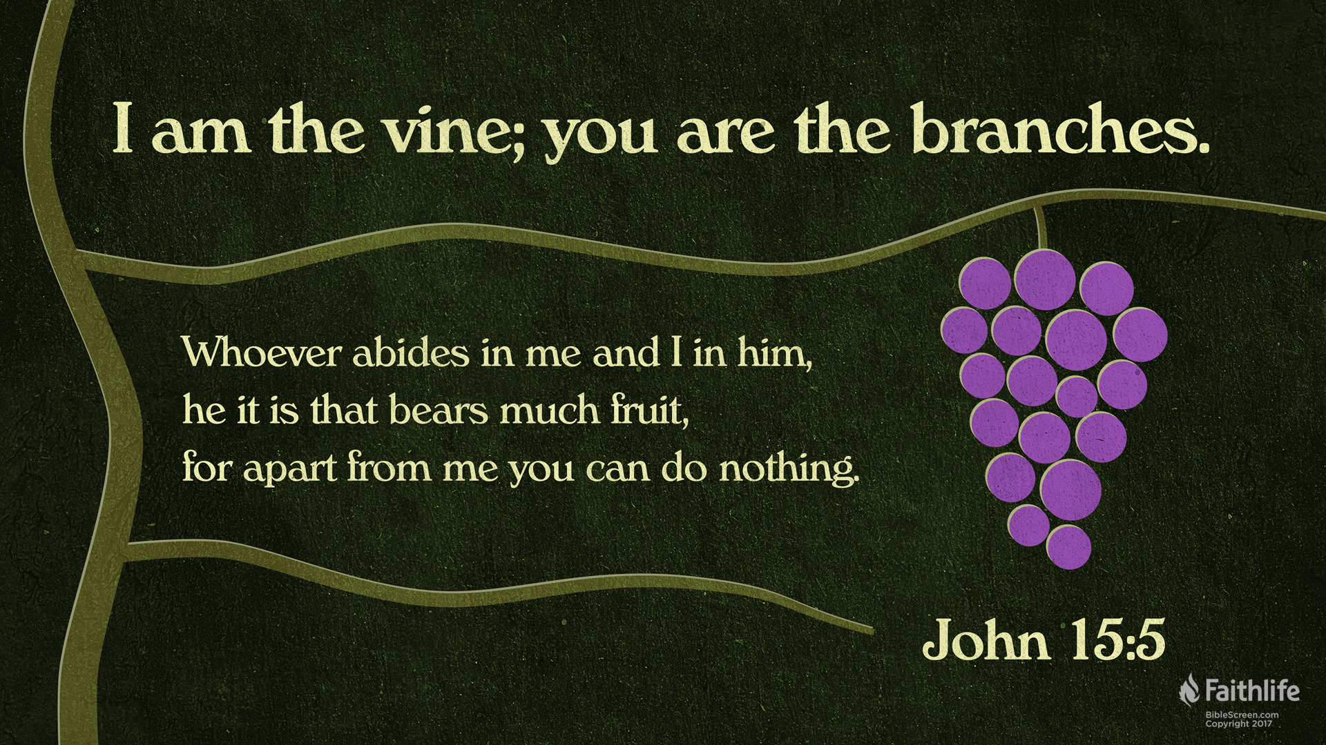 Image result for i am the vine you are the branches