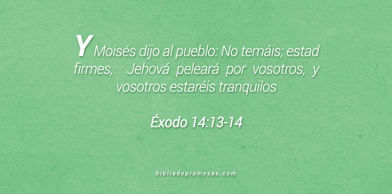 Éxodo 14:13-14