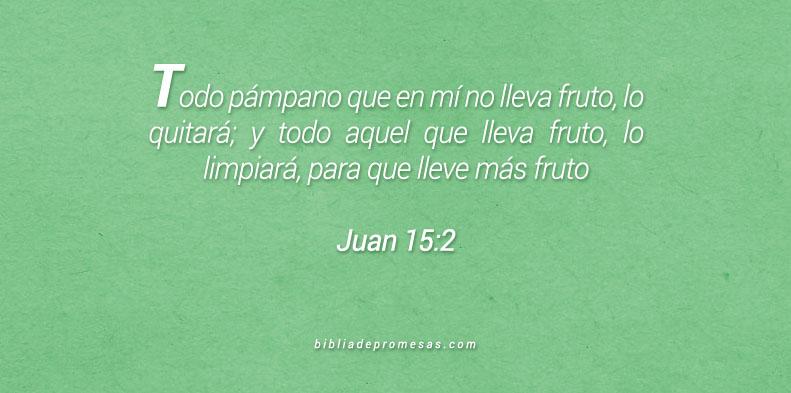 Juan 15:2