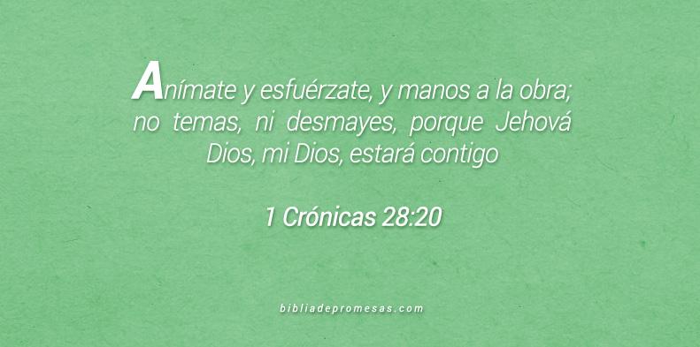 Dios decide nuestros planes