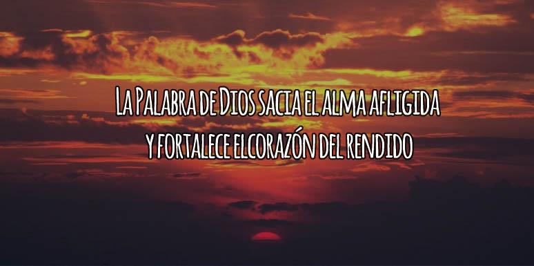 Sacia El Alma