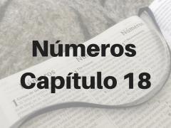 Números Capítulo 18