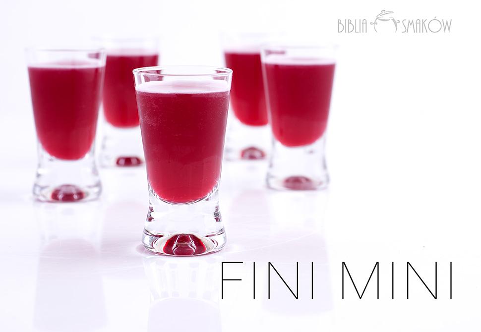 s_finimini_PFA6776