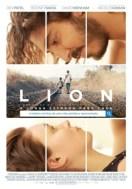 lion-a-longa-estrada-para-casa