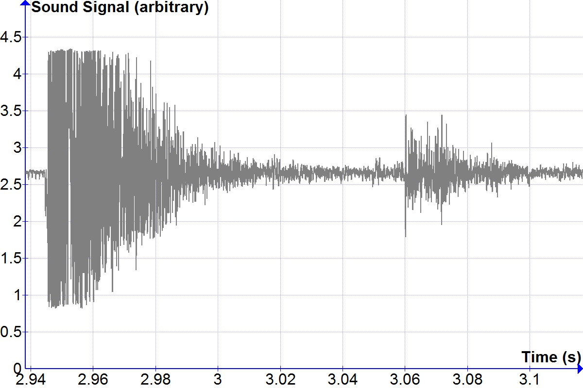 Sound signal showing direct firecracker report