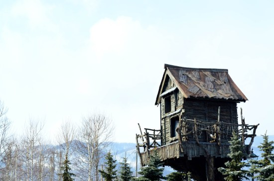 Wooden tree house against blue sky with pine tree and mountain background