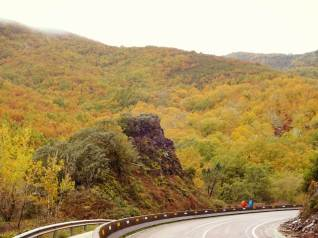 Autumn along the Camino Frances (and along the highway in Bierzo).