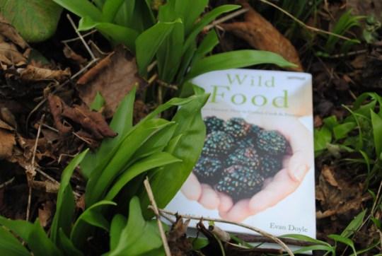 Wild Food by Biddy White Lennon & Evan Doyle: