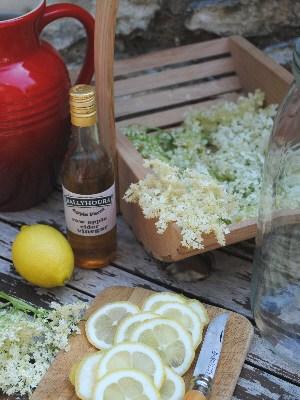 Bibliocook.com - making Elderflower Champagne