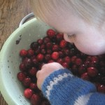 Final countdown: Cranberry, Orange and Port Relish