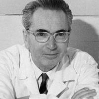 Risorse bibliografiche su Viktor Frankl