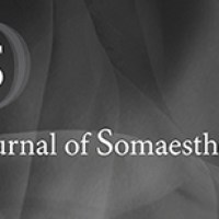 Journal of Somaesthetics: una rivista online di somaestetica