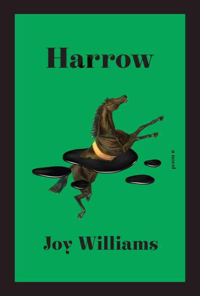 Harrow:A novel Joy Williams