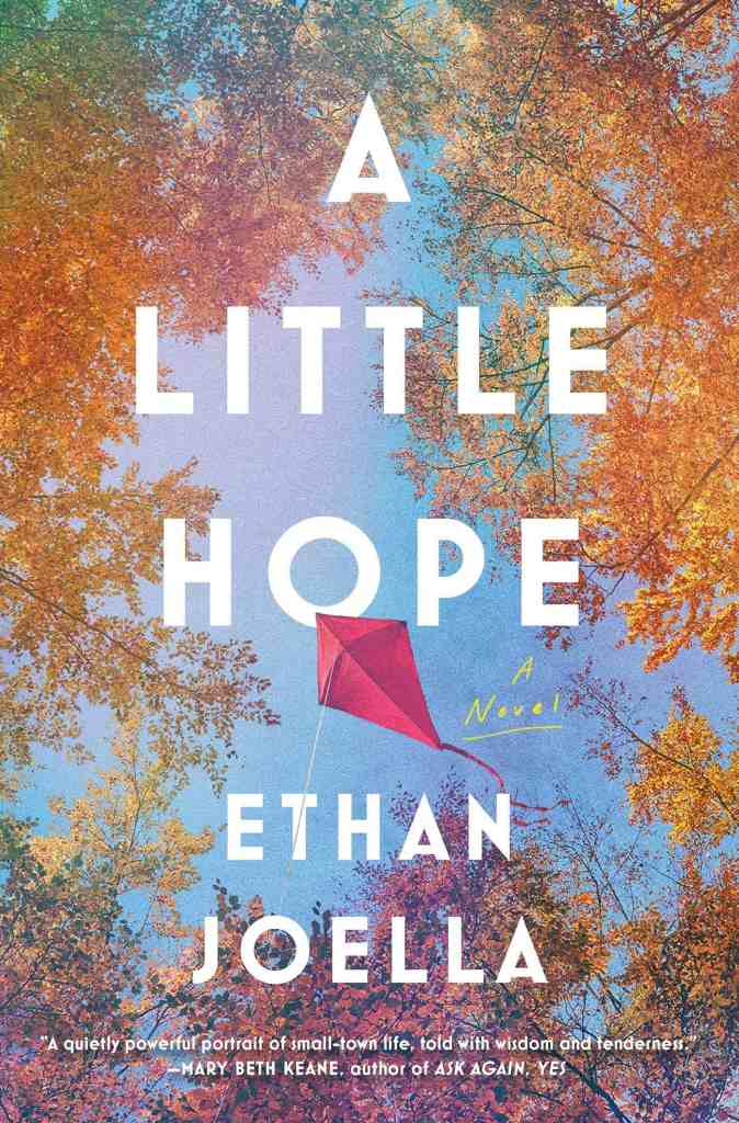 A Little Hope:A Novel Ethan Joella
