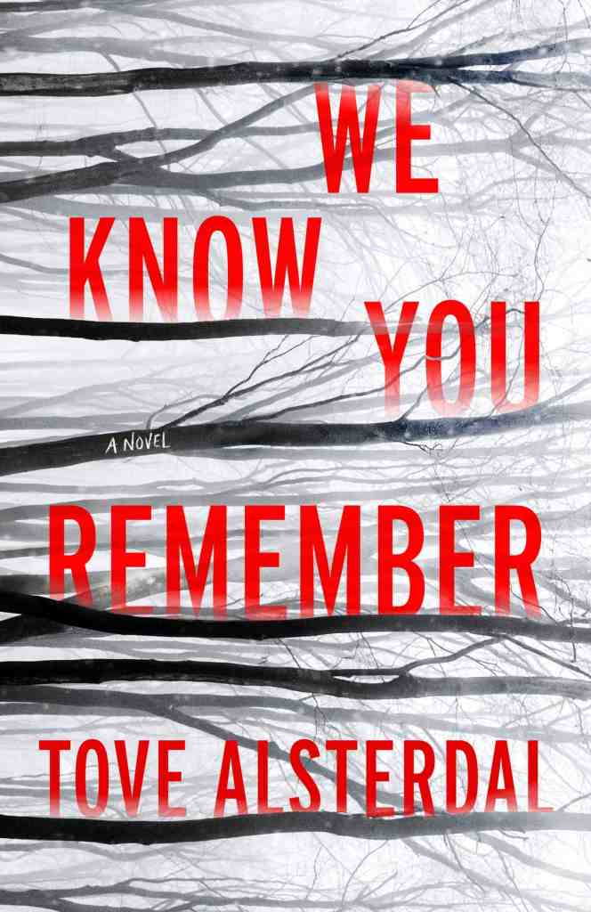 We Know You Remember:A Novel Tove Alsterdal