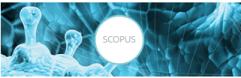 SCOPUS: Formación de FECYT