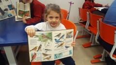Pesquisa Aves2