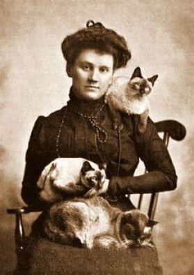 Cat Lady 2g  Peculiar Cat Funerals in the Victorian