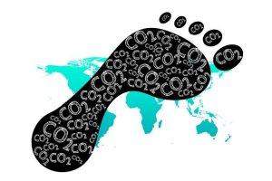 empreinte écologique du livre papier et numérique