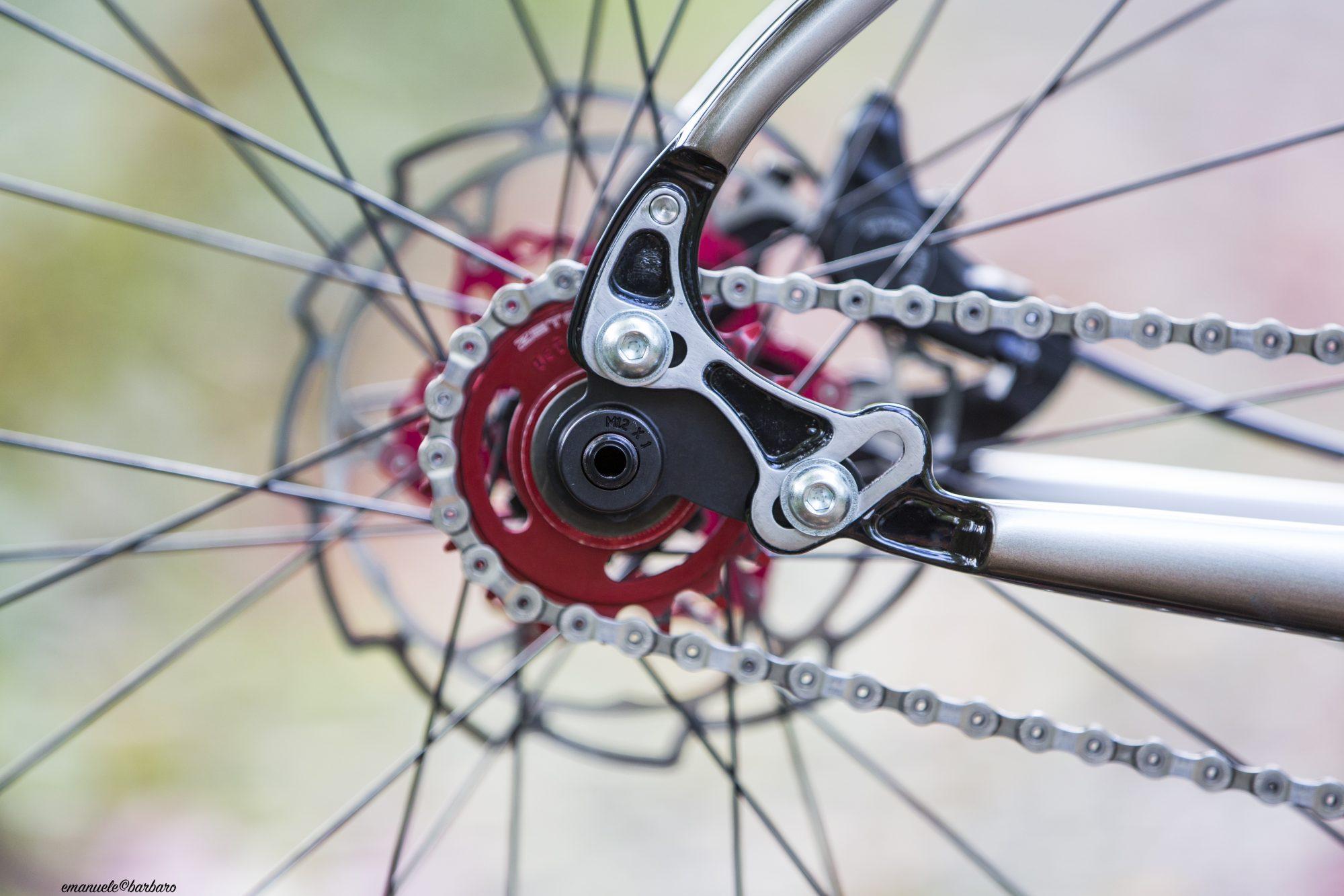 singlespeed bice bicycles 29er endurello enduro hardtail bespoke handcrafted