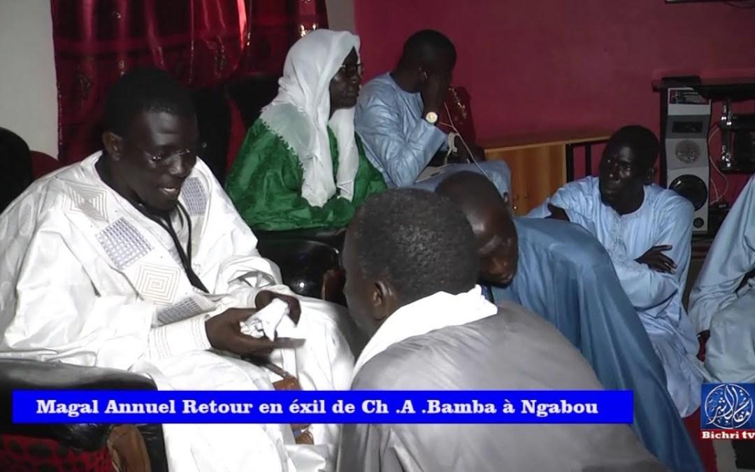 Ngabou : Magal Retour en éxil de cheikh Ahmadou Bamba