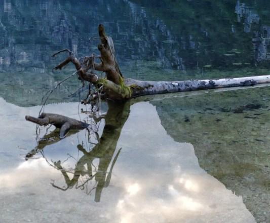 Riflessi sul Lago di Bohinj