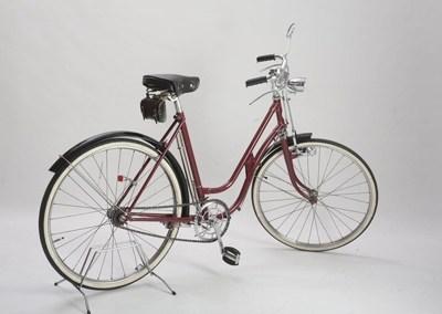 Bicicletas de varillas