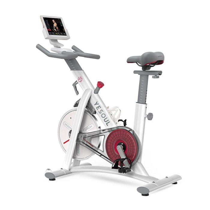 Xiaomi Yesoul Spinning Bike