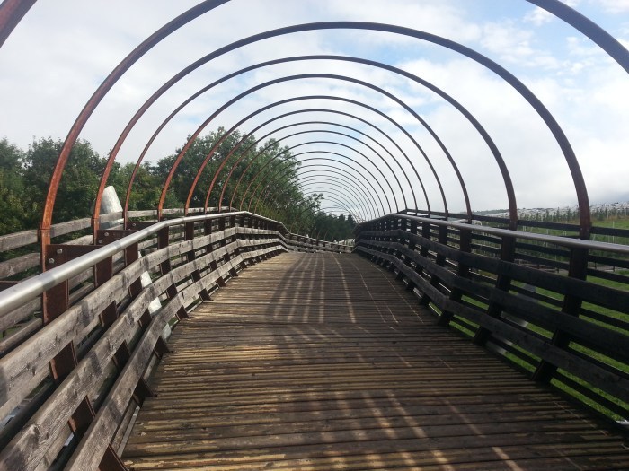 ponte-ciclabile-fondo