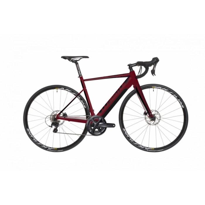 whistle-flow-alloy-2019-e-bike