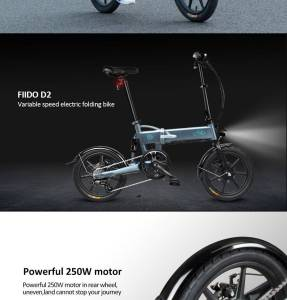 Fiido DS2 Electric Folding Bicycle