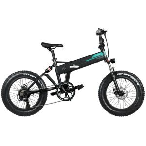Fiido M1 Electric Bike 20inch Wheel, 4 inch Tire