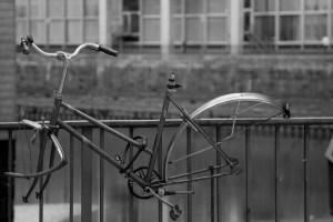 thebicyclestory-bike-177029_960_720