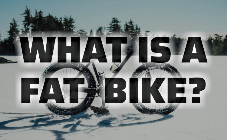 What Is A Fat Bike?