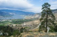osoyoos, did i just bike to california or what?