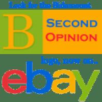 bidamount second opinion on ebay