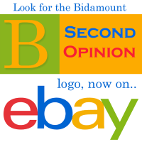 bidamount second opinion on ebay