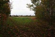 site 29b Green Farm
