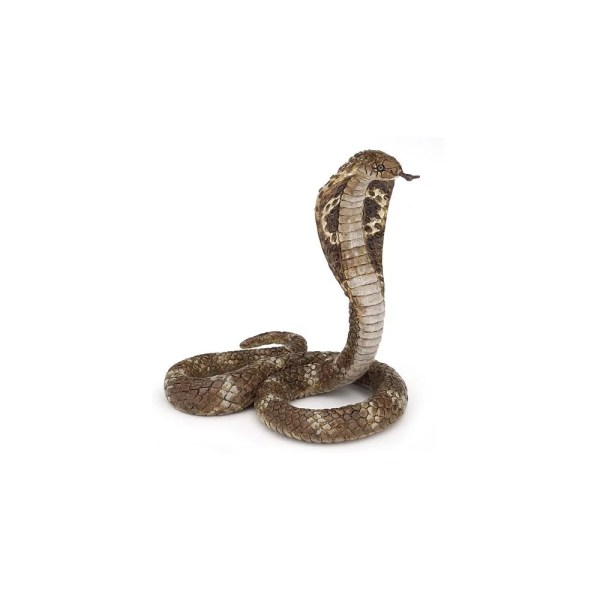 Figurine La vie sauvage, Cobra royal, Papo, Bidiboule