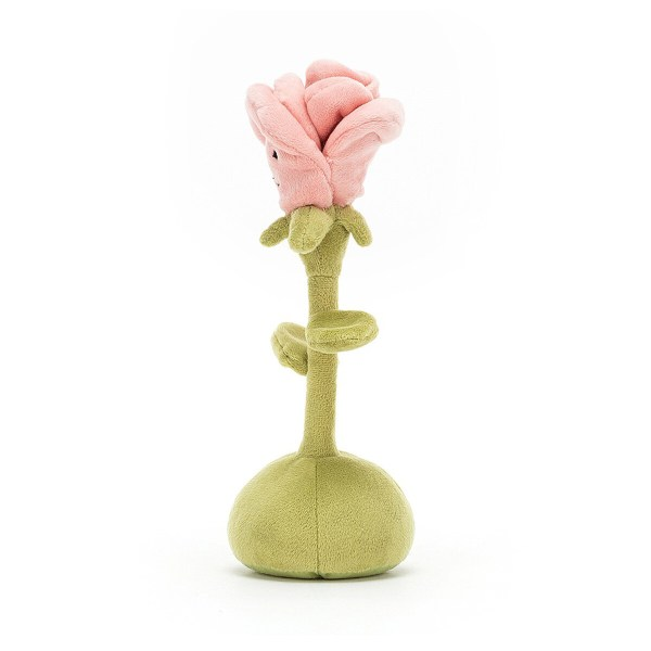 La rose a une jolie coiffe composée de pétales mêlées et est de couleur rose pale.