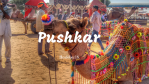 #PushkarCalling : 15 Pictures that urge you to pack your bags and leave for Pushkar now!