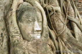 Thailande_6667