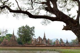 thailande115