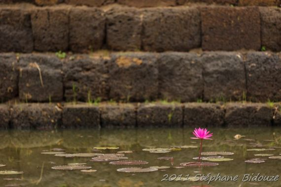 thailande_6092