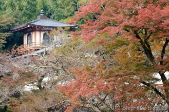 Ryuanji temple fall scenery