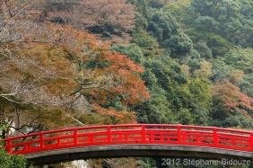 japanese bridge at fall