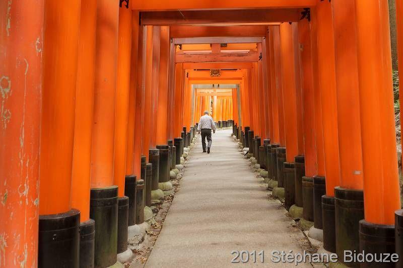 Kyoto, many temples!