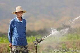 asian farmer watering